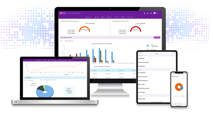 Smarty software accounting